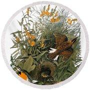 Audubon: Meadowlark Round Beach Towel