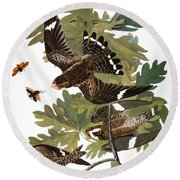 Audubon: Nighthawk Round Beach Towel
