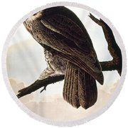 Audubon Owl Round Beach Towel