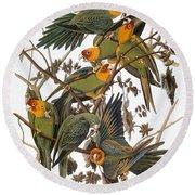 Audubon: Parakeet Round Beach Towel