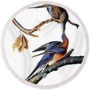 Audubon: Passenger Pigeon Round Beach Towel