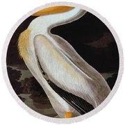 Audubon: Pelican Round Beach Towel