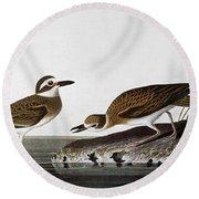 Audubon: Plover, 1827-38 Round Beach Towel