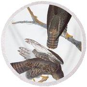 Audubon: Red-tailed Hawk Round Beach Towel