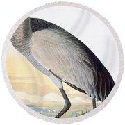 Audubon Sandhill Crane Round Beach Towel