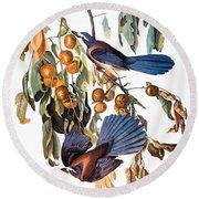 Audubon: Scrub Jay, 1827-38 Round Beach Towel