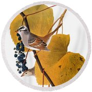 Audubon: Sparrow Round Beach Towel