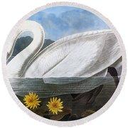 Audubon: Swan, 1827 Round Beach Towel