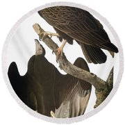 Audubon: Turkey Vulture Round Beach Towel