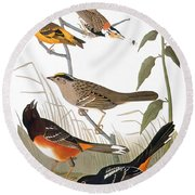 Audubon: Various Birds Round Beach Towel