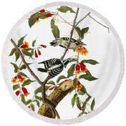 Audubon: Woodpecker, 1827 Round Beach Towel