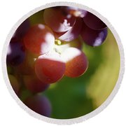 Auntie Thelma's Grapes - Ripening Round Beach Towel