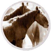 Wild Horses - Australian Brumbies 3 Round Beach Towel