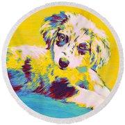 Aussie Puppy-yellow Round Beach Towel
