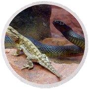 Australia - The Taipan Snake Round Beach Towel