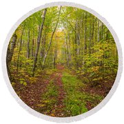 Autumn Birch Woods Round Beach Towel