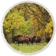 Autumn Bison Round Beach Towel