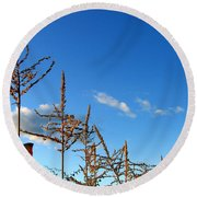 Autumn Corn Round Beach Towel