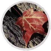 Autumn Find Round Beach Towel