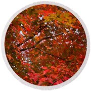 Autumn Foliage-1 Round Beach Towel