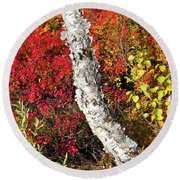 Autumn Foliage In Finland Round Beach Towel