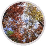 Autumn Forest Canopy Round Beach Towel