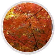 Autumn Gold Poster Round Beach Towel