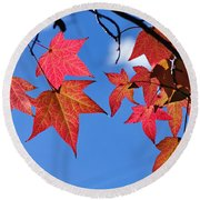Autumn In The Sky Round Beach Towel
