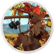 Autumn In The Wine Country Round Beach Towel