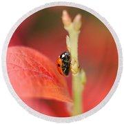 Autumn Ladybird Round Beach Towel