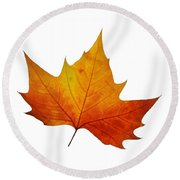 Autumn Leaf 1 Round Beach Towel