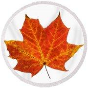 Autumn Leaf 3 Round Beach Towel