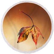 Autumn Leaf Fallen Round Beach Towel