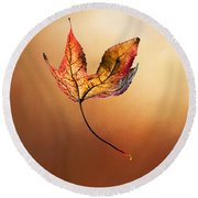 Autumn Leaf Falling By Kaye Menner Round Beach Towel