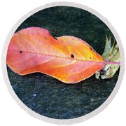Autumn Leaf In August Round Beach Towel