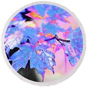 Autumn Leaves In Blue Round Beach Towel