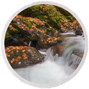 Autumn Litter Round Beach Towel