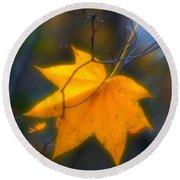 Autumn Maple Leaf Round Beach Towel