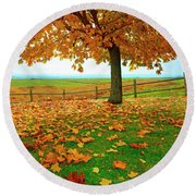 Autumn Maple Tree And Leaves Round Beach Towel