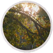 Autumn Morning Glow Round Beach Towel