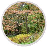 Autumn Paints A Dogwood And Ferns Round Beach Towel
