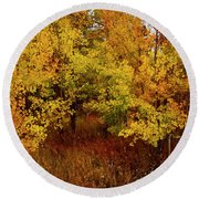Autumn Palette Round Beach Towel by Carol Cavalaris