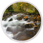 Autumn Passages Round Beach Towel