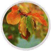 Autumn Persimmon Leaves Round Beach Towel