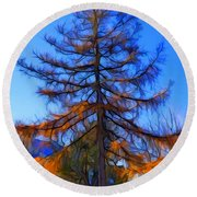 Autumn Pine Tree Round Beach Towel