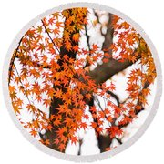 Autumn Red Leaves On A Tree   Round Beach Towel