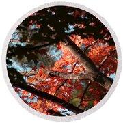 Autumn Red Trees 2015 02 Round Beach Towel