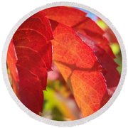 Autumn Reds Round Beach Towel