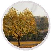 Autumn Tree At Sunset Round Beach Towel