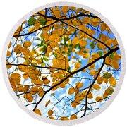Autumn Tree Branches Round Beach Towel by Elena Elisseeva